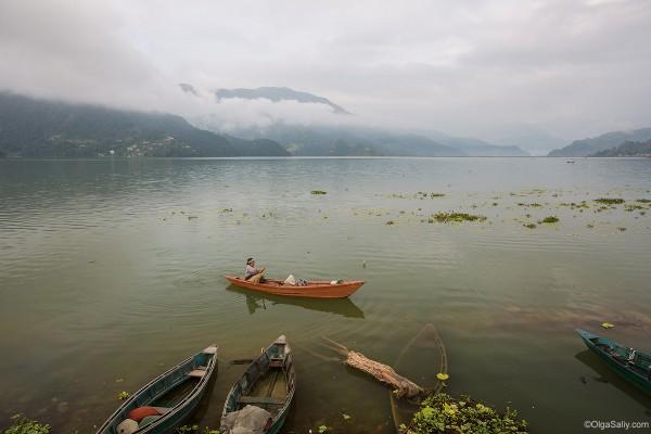 Покхара, Фева