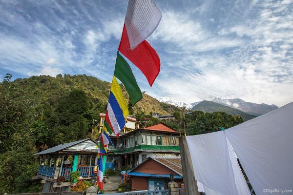Йога тур в Гималаях, Чомронг
