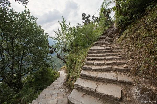 Гималайские лестницы в горах